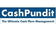 Cashpundit Cash flow management